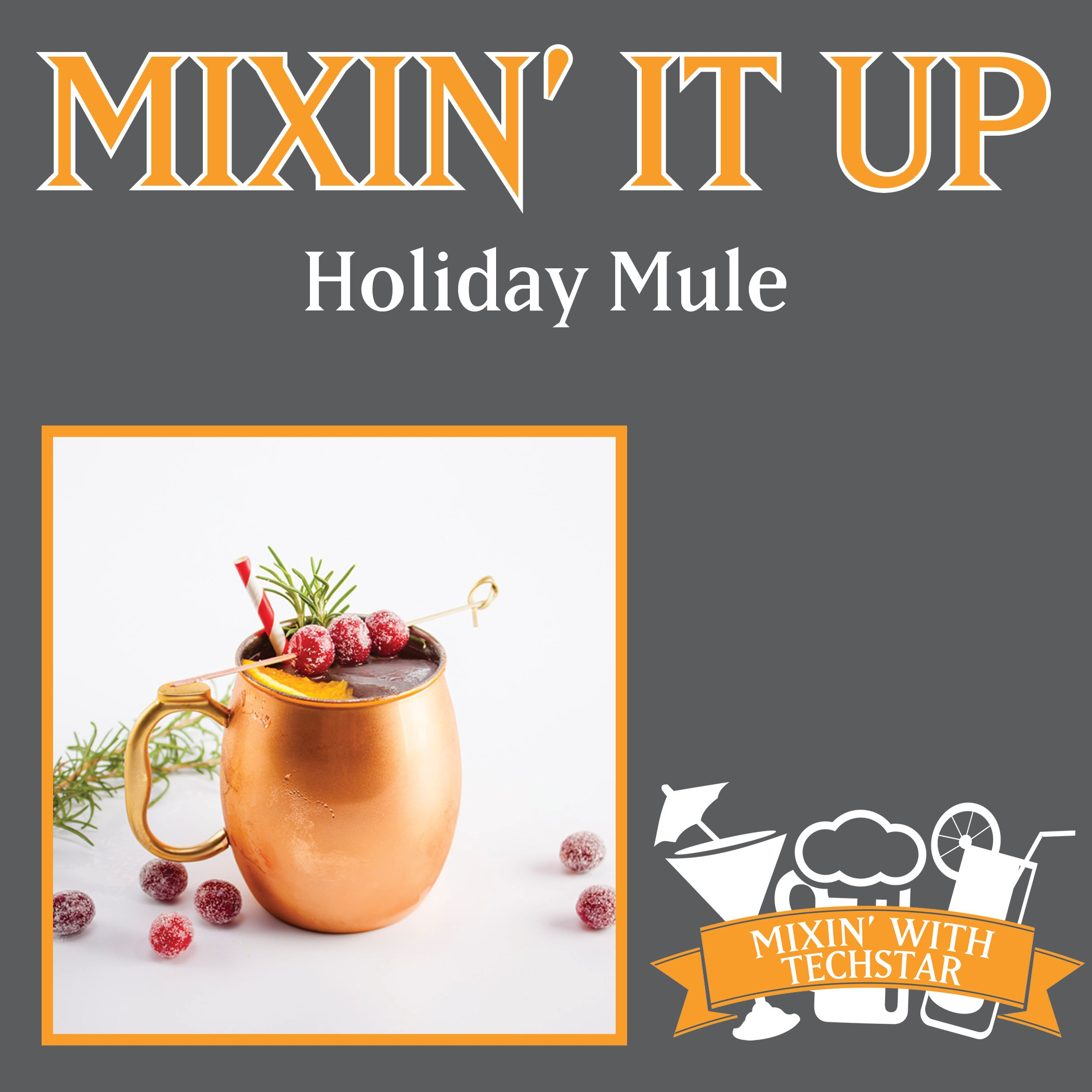 Holiday-Mule-Post.jpg